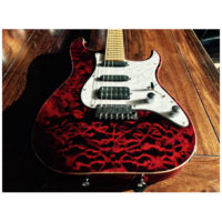 Schecter_sunset_custom_1